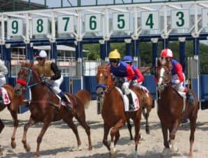 Horse Racing Worker's Comp